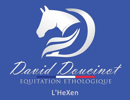 David Doucinot Equitation Ethologique